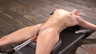 Newcomer Kenzi Ryans Machine Fucked