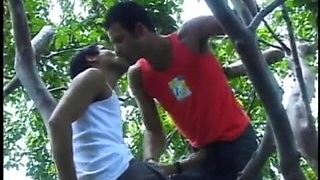 2 couples having swinger sex outdoors
