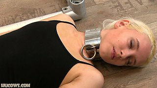 Blonde sex slave tied to milking machine and abused