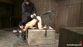 Tia Ling Gets Rough Anal In Device Bondage